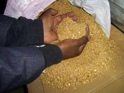 450 kg of gold dust for sell