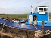 Ex Thames Tug For Conversion - William Ryan